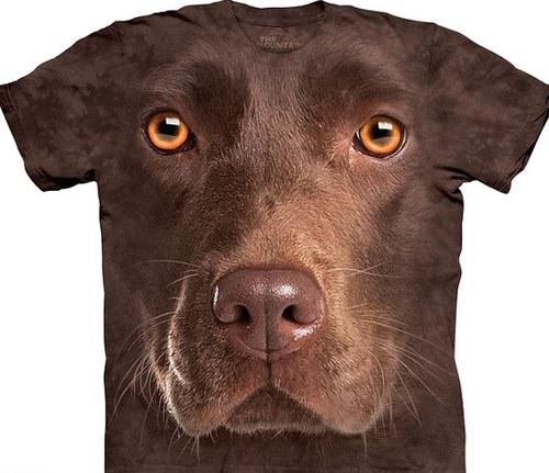 無地Tシャツについて語ろう。 44オンス [無断転載禁止]©2ch.netYouTube動画>1本 ->画像>64枚